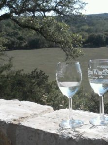 texas wine view